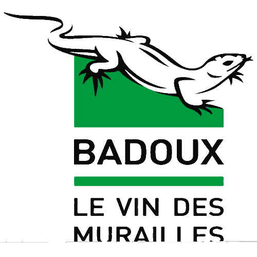 Henri Badoux